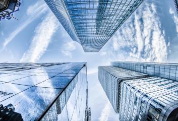 Thành lập công ty có cần bằng cấp không?
