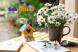 Gợi ý 11 món đồ trang trí bàn làm việc mang lại may mắn cho bạn
